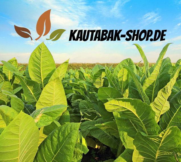 Teaser mit Logo vom Kautabak-Shop